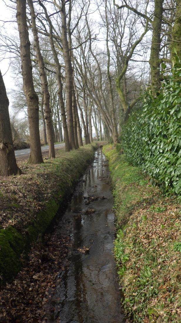 180402 fietsen Binnenveld (12)