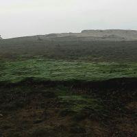 Over het Mosselse Zand