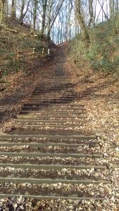 Cortenstalen trap op de Grebbeberg.
