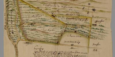 De Moft in 1650