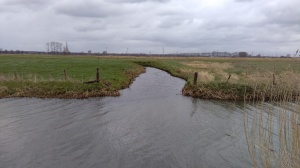 Oude monding van de Nergenasebeek in de Grift