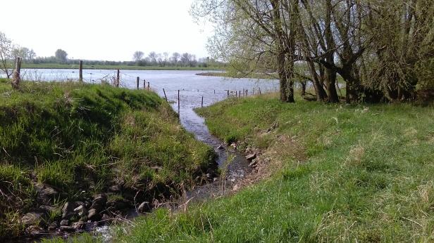 foto Renkumse Molenbeek in Rijn