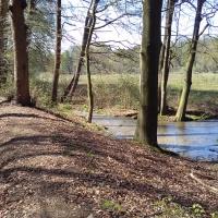 Het Renkums Beekdal: de Molenbeek