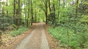 foto Hollandse Weg - Mosweg