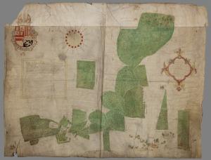 Kaart van Thomas Witteroos, 1570, van het Coenenbos.