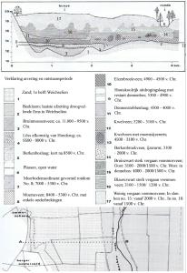 4 schema doorsnede opbouw hoogveen