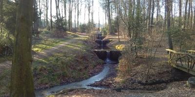 Stuwtjes in de Oorsprongbeek