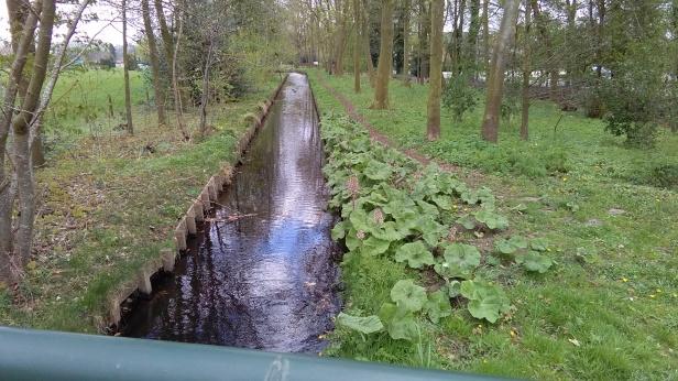 IMG_20190411_135511.jpg foto Oudebeek Apeldoorn