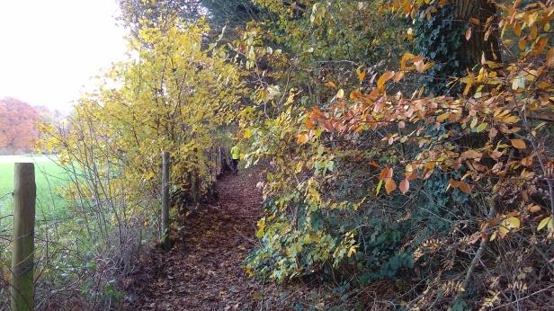 foto Wageningen Scheidingslaan Heidepark
