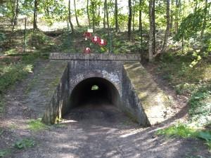 Fietstunnel bij Wolfheze