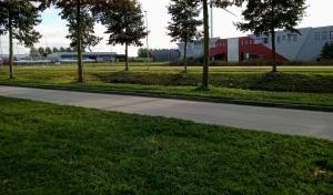 De Buurtsteeg waar het Veldhuizerschut gelegen moet hebben.
