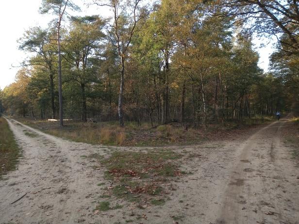 De hoek van de Sijsselt bij de Ginkelse heide.