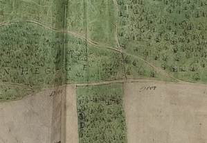 Detail van de kaart van Witteroos van het Coenenbos.